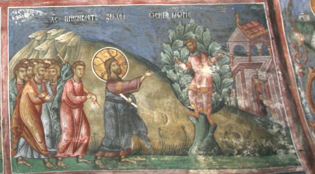 Пета неделя преди Великия пост - За Закхей